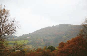 La ganadería en las que se crían las terneras Hanalde se encuentra en Astigarraga.